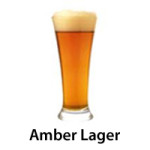 amber lager copy