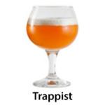 trappist copy